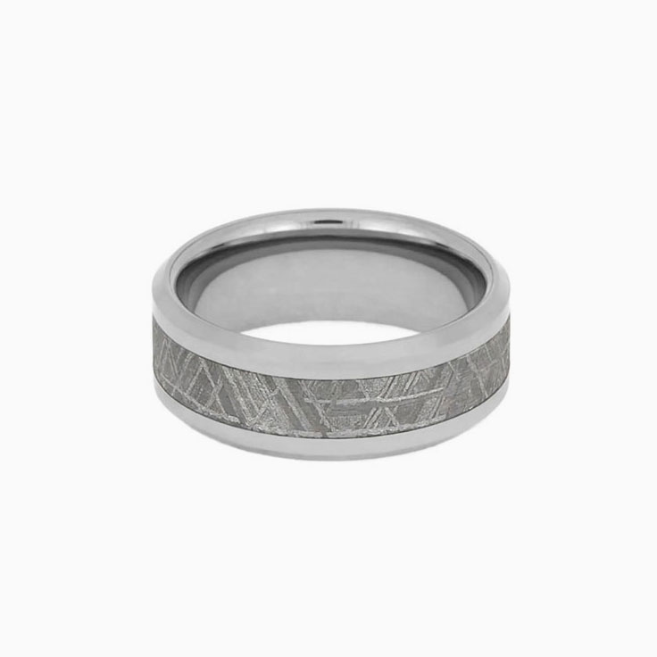 Gibeon Meteorite Ring in Titanium 1159